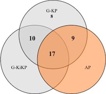 Abb.1: Verteilung der innerhalb der Pflegestudiengänge erwerbbaren Berufsexamina (eigene Berechnung)