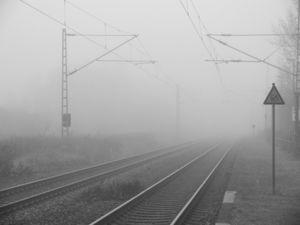Nebel-Schienen: Ernährungsumstellung hilft (Foto: pixelio.de/Lutz Stallknecht)