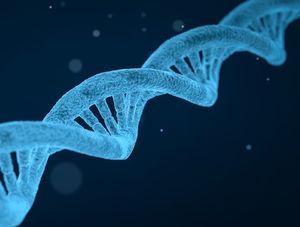 DNA: Genkombinationen entscheiden über Ehe (Foto: pixabay.com, qimono)