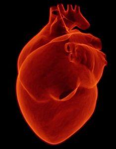 Herz: Selbst kleine Fehler sind später gefährlich (Foto: pixabay.com, sbtlneet)