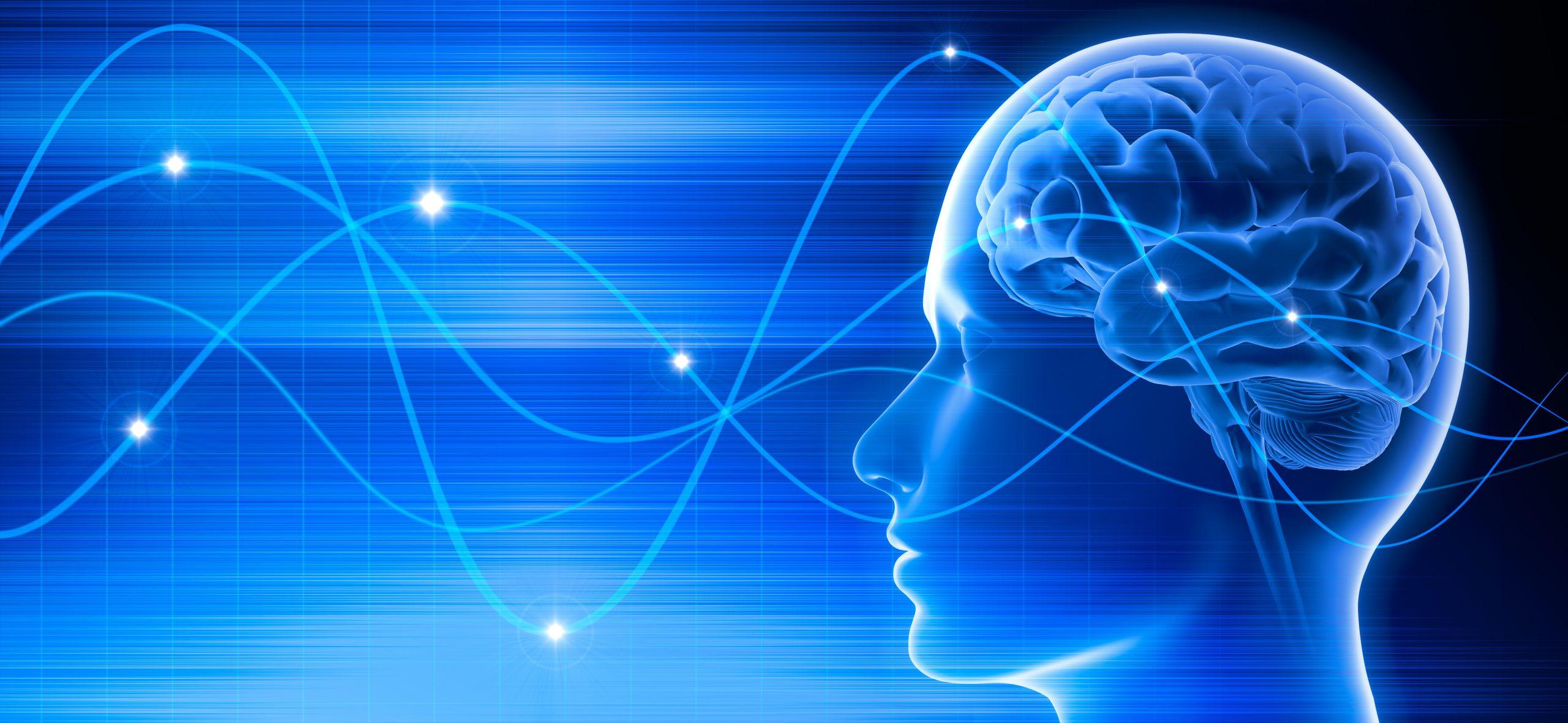 Gehirn – Schwingungen